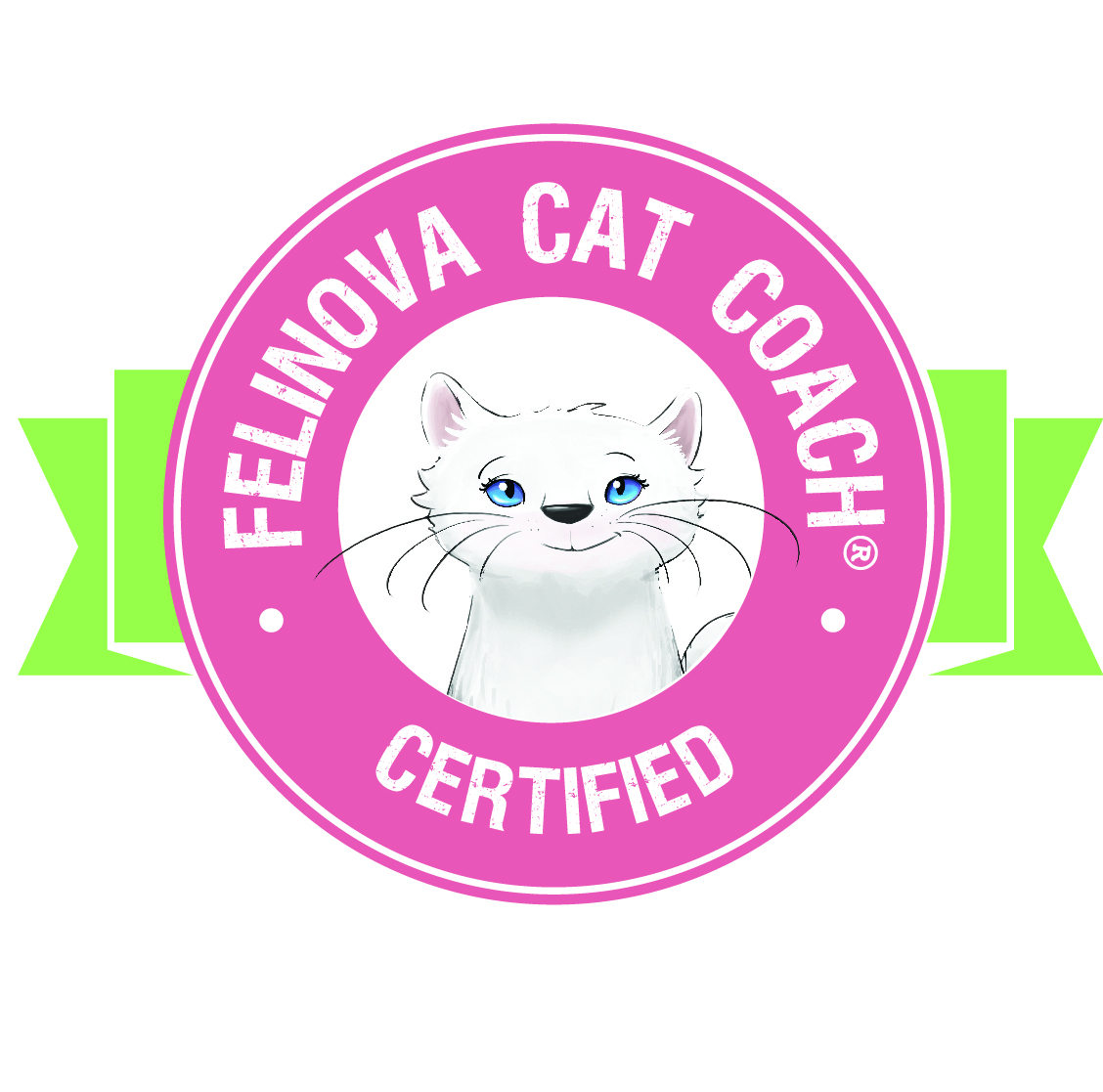 Cat Coach Felinova - Certified